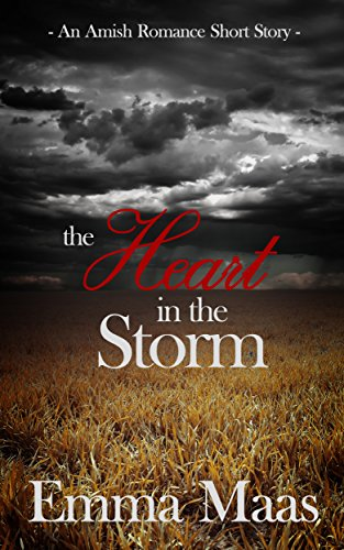 The Heart in the Storm: An Amish Romance Short Story